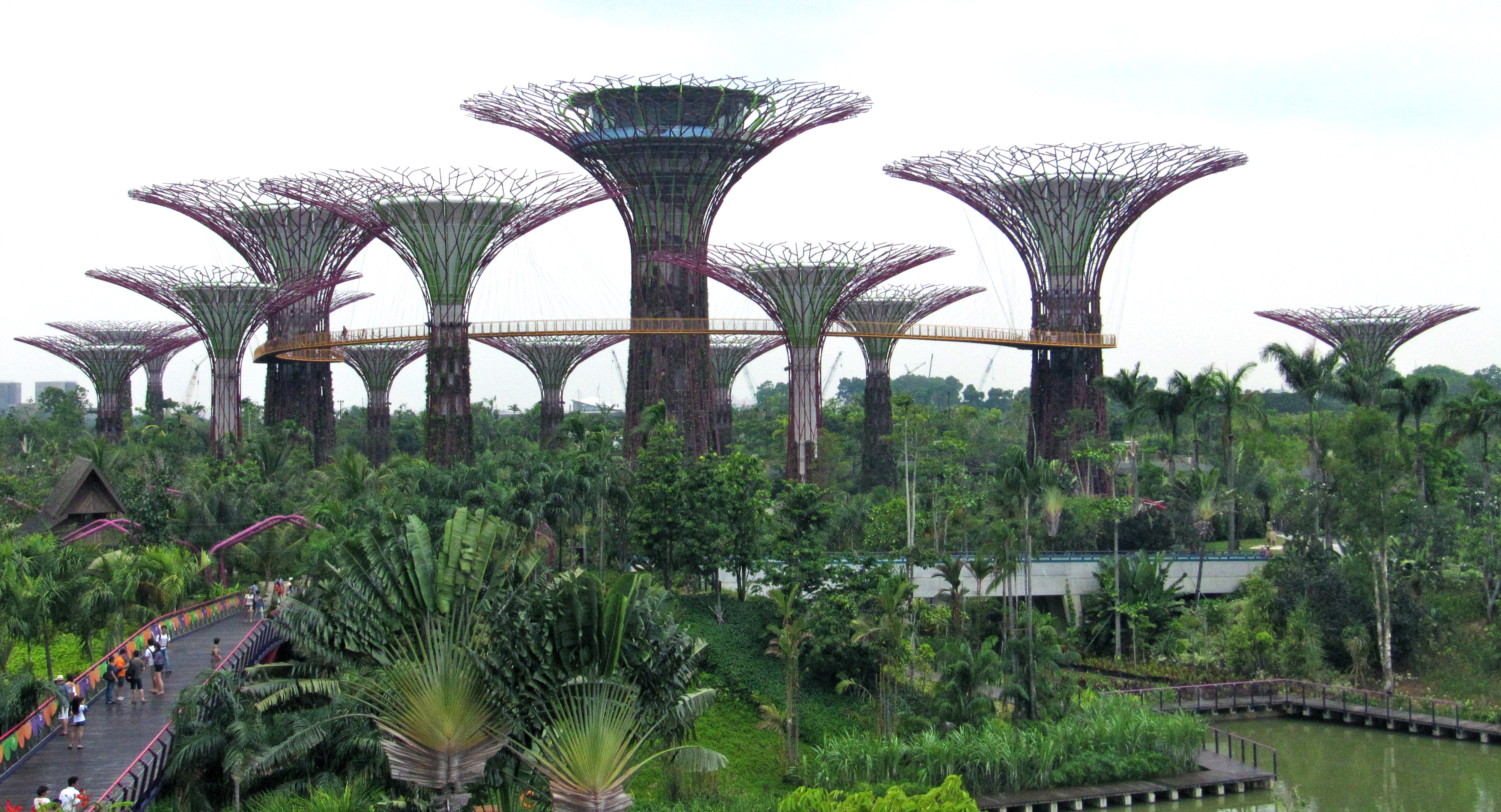 Gardens by the bay singapore an eco disaster for Garden city trees
